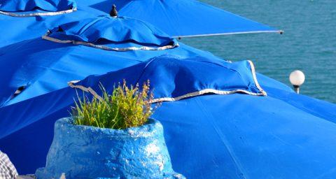 Los azules de Sidi Bou